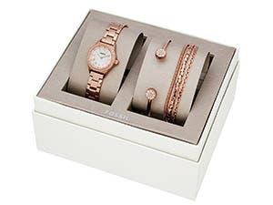 Women's and men's watches set