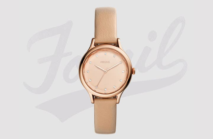 Insight-Fossil-Teaser_720x470_02.jpg