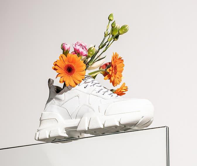 SchuhePremium